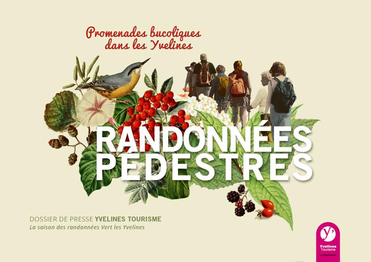 mini-DP-pedestre-2015-Yvelines