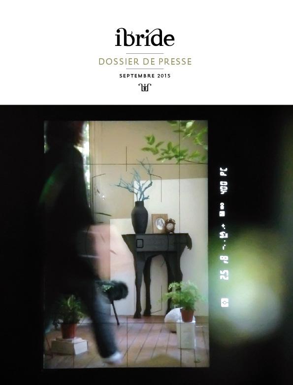 DP-IBRIDE-FR-2015-1