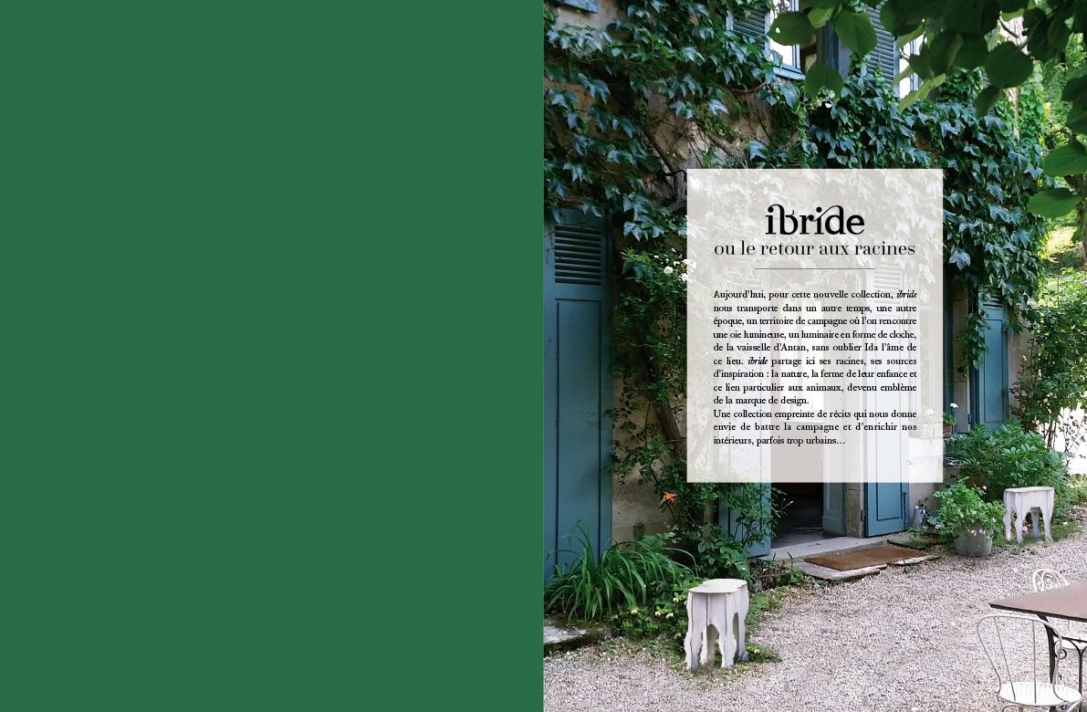 DP-IBRIDE-FR-2015-2